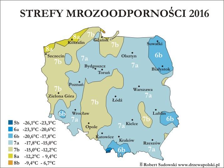 strefy-mrozoodpornosci-2016